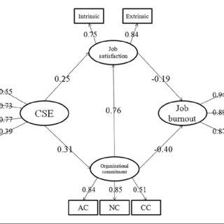 Model 1. CSE: core self-evaluation; AC: affective