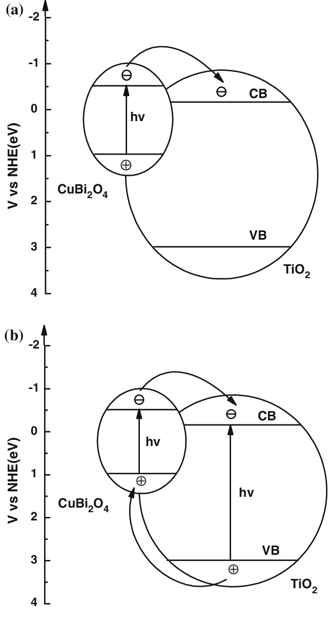 Schematic diagram of photoexcited electron-hole separation