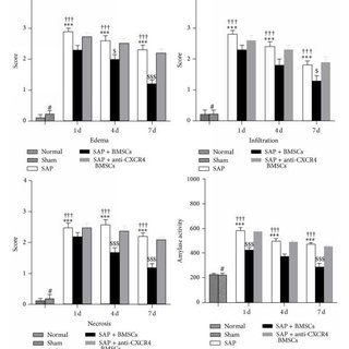(PDF) Bone Marrow-Derived Mesenchymal Stem Cells Repair