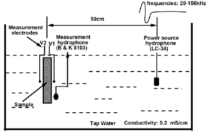 Schematic diagram of the seismoelectric measurements in a