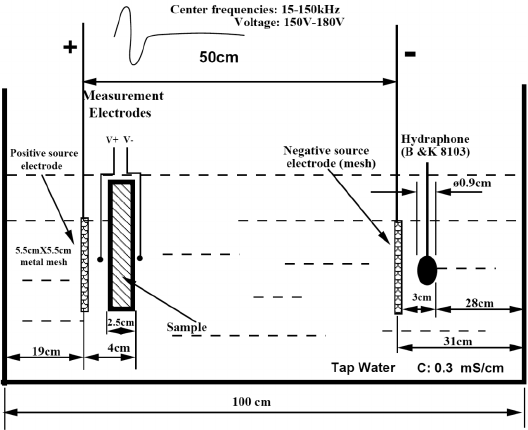 Schematic diagram of electroseismic measurements in a