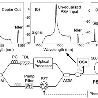 Experimental setup and typical optical spectra at (a