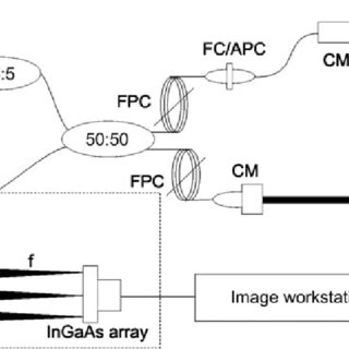 (PDF) Noninvasive and High-Resolution Optical Monitoring