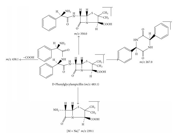 Proposed fragmentation pathway for the fragmentation ion