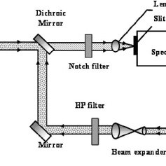 Schematic of the Raman microscope system for SERS spectrum