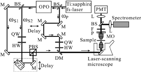 Schematic of the phase-controlled polarization CARS