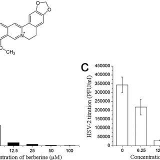 (PDF) Downregulation of Cellular c-Jun N-Terminal Protein