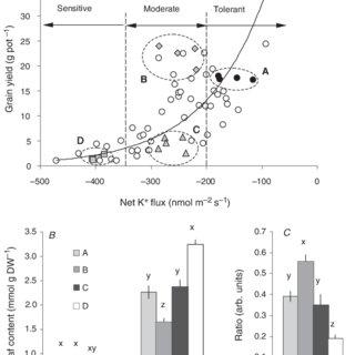 (PDF) Potassium and sodium relations in salinised barley