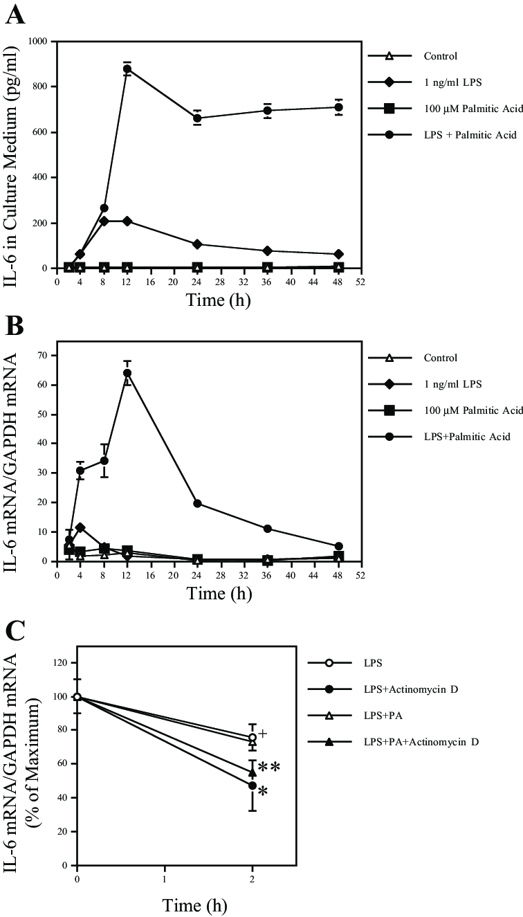 Time course of IL-6 secretion and mRNA expression by RAW