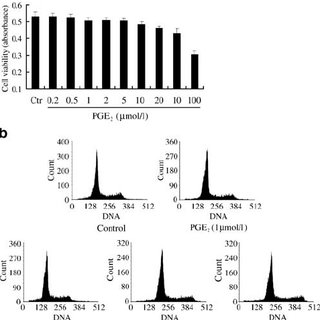 Effects of PGE 2 on HIT-T15 cell viability and apoptosis