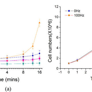 Transfection efficiency of leukemia cell lines THP-1, OCI