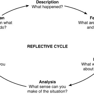 (PDF) Developing the Reflective Sports Coach: A study