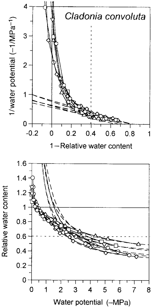 small resolution of p v and rwc y curves of the combined data for dumortiera hirsuta 3 replicates