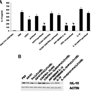 Autocrine secretion of IL-10 by tumor cells in vitro . One