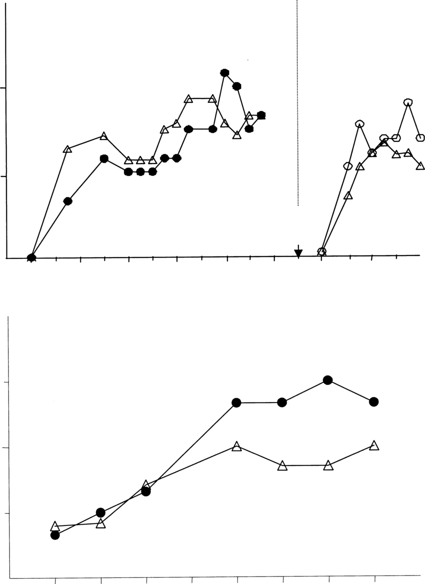 hight resolution of  a numbers of large follicles 10 mm of cooled n 7 and heat stressed n 6 cows during the treated oestrous cycle and during the subsequent