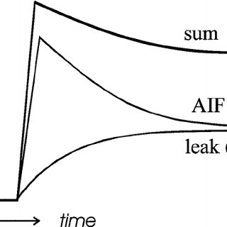 Schematic of enhancement curve as a function of time in