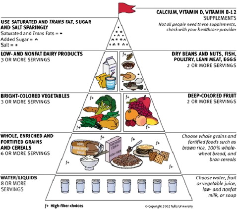 diagram food guide saab wiring diagrams the pyramid for older adults from tufts university 2002