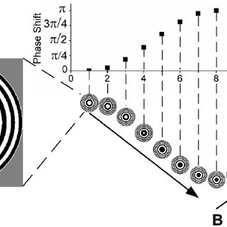 (PDF) Steady-State Motion Visual Evoked Potentials
