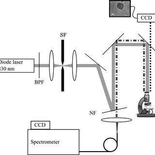 Confocal Raman microscope. Schematic overview of confocal