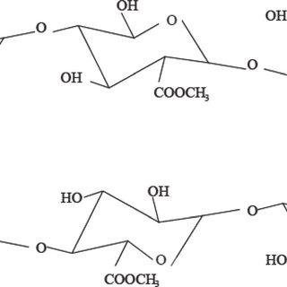 (PDF) Development of in vitro models to demonstrate the