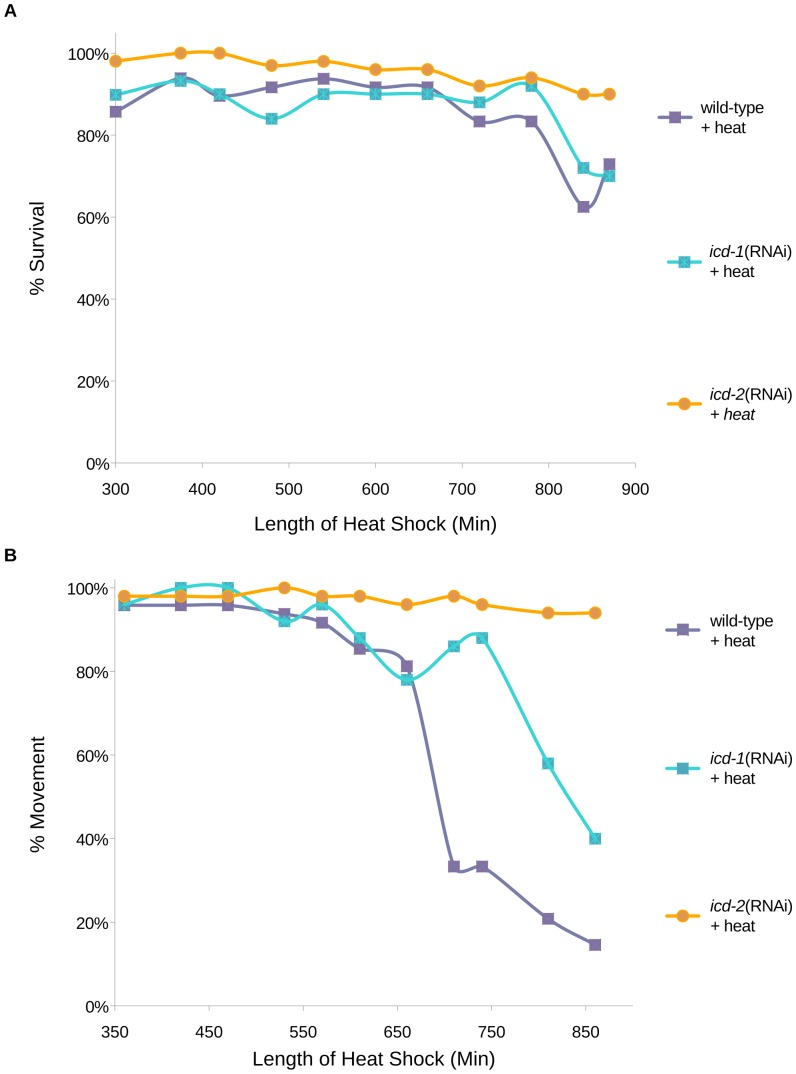 hight resolution of developmentally synchronized wild type n2 c elegans larvae were fed icd 1 or icd 2 rnai specific bacteria for 30 hours and exposed to continuous heat