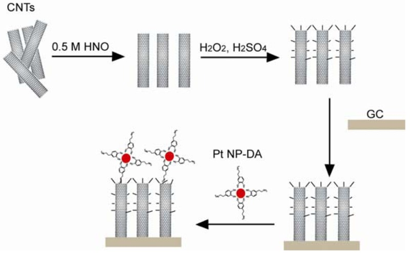 The schematic of the fabrication of a CNT based H2O2