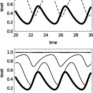 An attractor showing anti-pulse transmission oscillations
