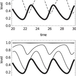 (PDF) Causal structure of oscillations in gene regulatory