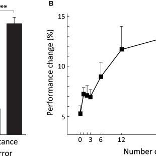 (PDF) Coupling internal cerebellar models enhances online