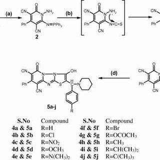 (PDF) Synthesis and pharmacological evaluation of novel 2