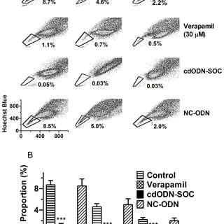 (PDF) Concomitant Targeting of Multiple Key Transcription Factors Effectively Disrupts Cancer