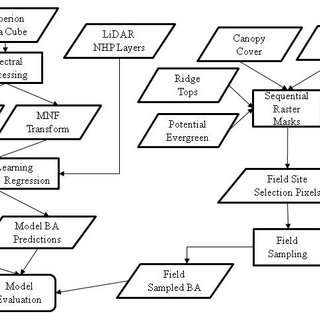 (PDF) Deciduous Forest Structure Estimated with LIDAR