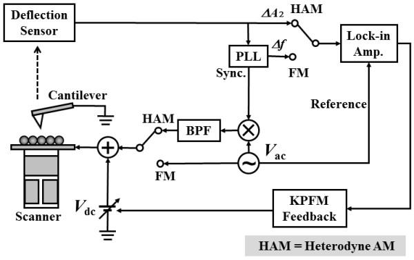 Schematic diagram of FM- and HAM-KPFMs. In FM-KPFM, an AC