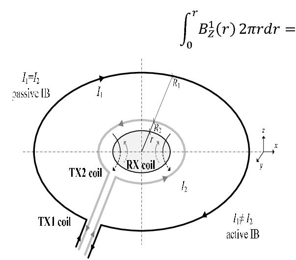 Block diagram of the sensing head in transmitter-bucking