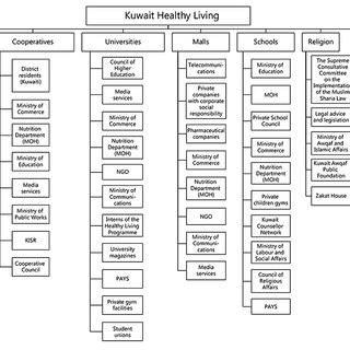 (PDF) Kuwait National Programme for Healthy Living: First