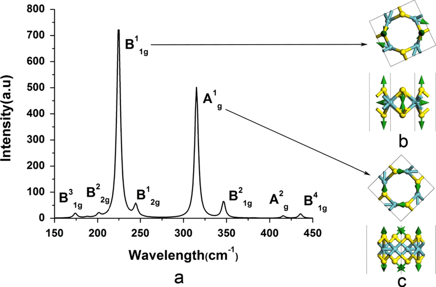 (a) Calculated Raman spectra of NbS2-8-4 Haeckelite; (b