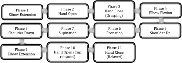 Flowchart of Experiment. The entire protocol consist of 11