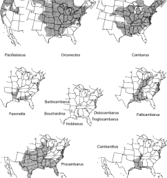 19 geographical distribution of north american crayfish genera not including anthropogenic introductions representing [ 850 x 1062 Pixel ]