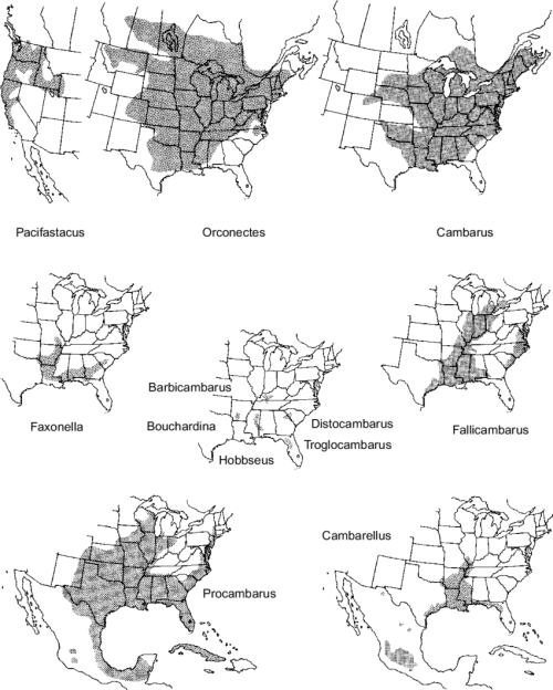 small resolution of 19 geographical distribution of north american crayfish genera not including anthropogenic introductions representing