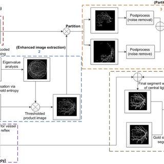 (PDF) Accurate Image Analysis of the Retina Using Hessian