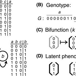 Monofunctional circuits typically have latent phenotypes