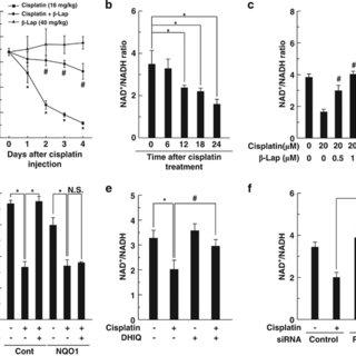 Lap inhibits cisplatin-induced acetylation of NF-κB p65