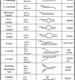 structures of dna substrates for helicase assays the labeled oligonucleotides were annealed to unlabeled complementary [ 850 x 1133 Pixel ]