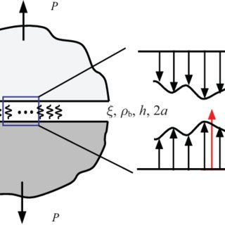 (PDF) Wavelet method applied to specific adhesion of