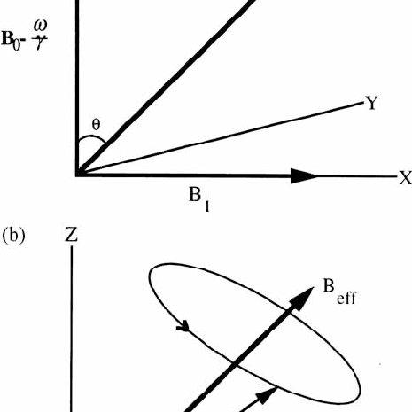 (PDF) Principles of magnetic resonance imaging