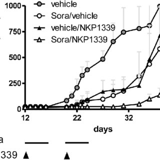 Mechanisms underlying the anticancer activity of KP1019