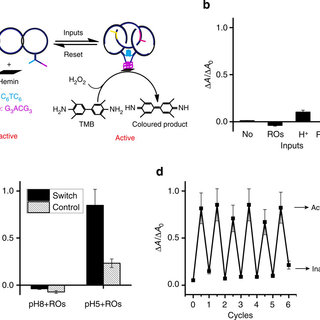 Logic behaviors of dye-labeled [3]pseudocatenane at four