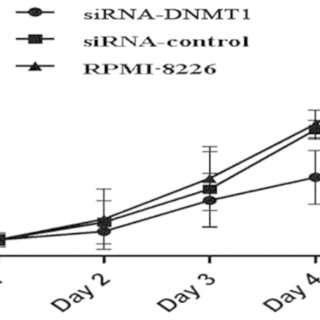 DNMT1 siRNA reduces NF-κB protein and BCL2 protein