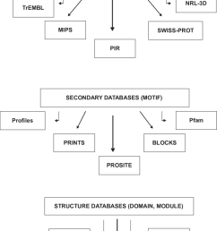hierarchy of bioinformatics tools for protein structure analysis  [ 850 x 1169 Pixel ]