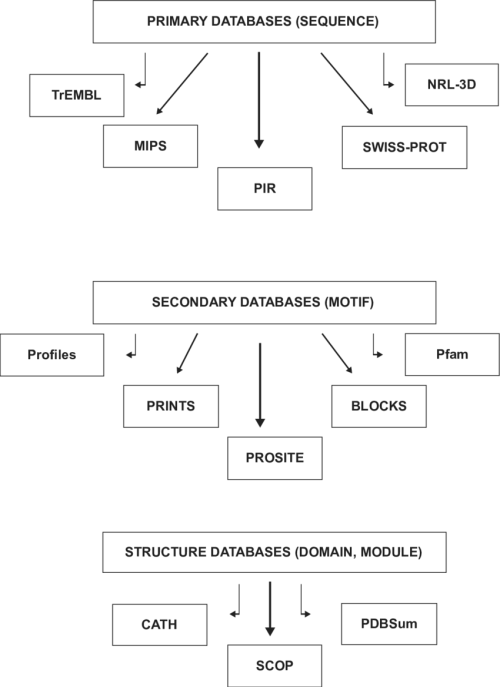 small resolution of hierarchy of bioinformatics tools for protein structure analysis